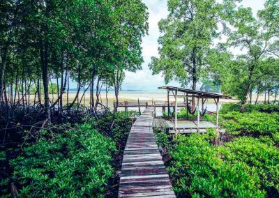 Bananas Bungalows KRABI bedrooms and bungalows 51